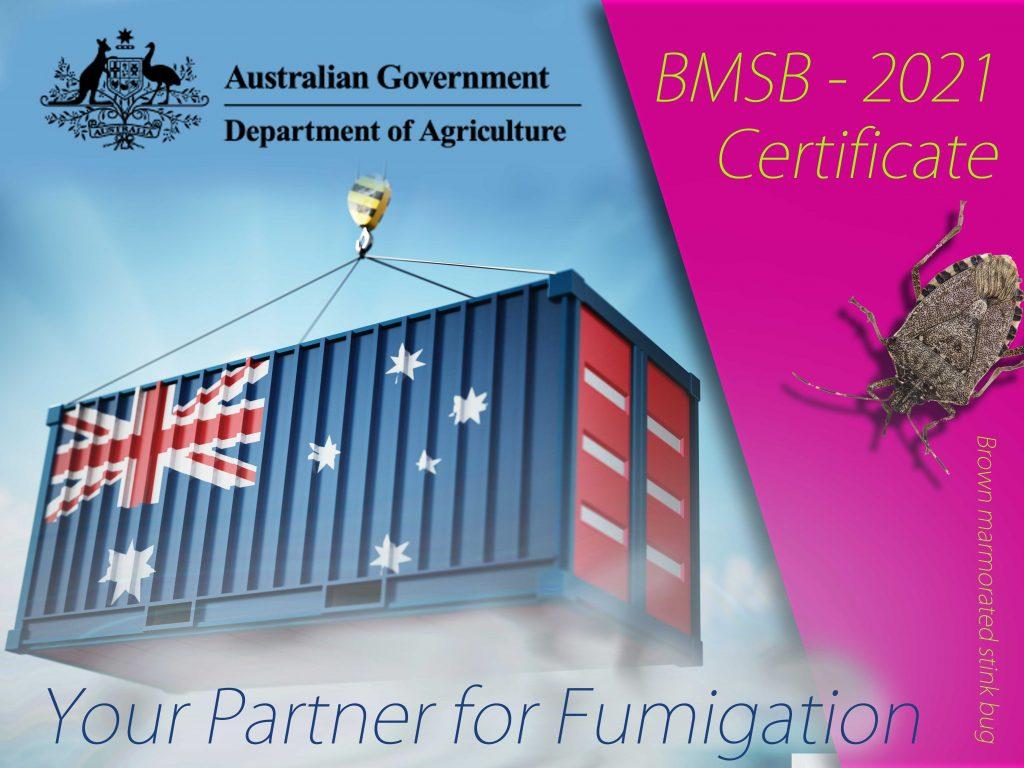 BMSB Fumigation Australia 2021